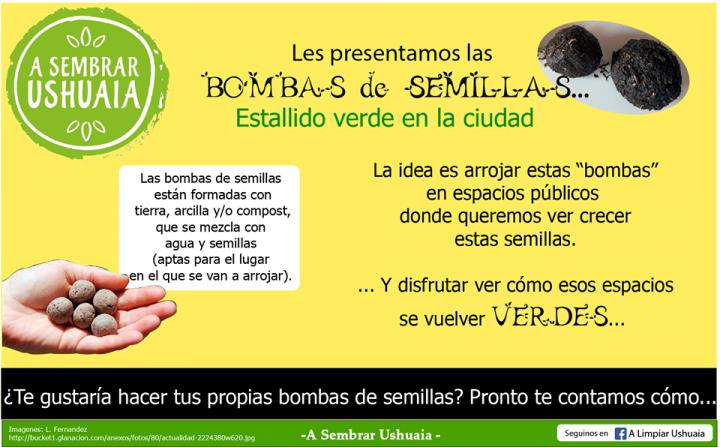 Bombas de Semillas2